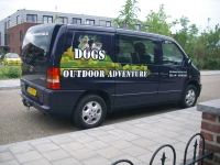 Dogs-outdoor-adventure_MB-Vito