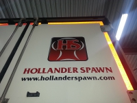 Hollanderspawn_3